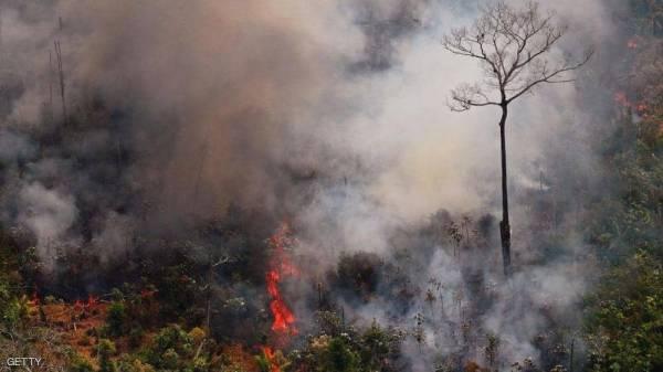 """بعد كارثة حرائق الأمازون.. النيران تلتهم """"رئة الأرض"""" الثانية"""