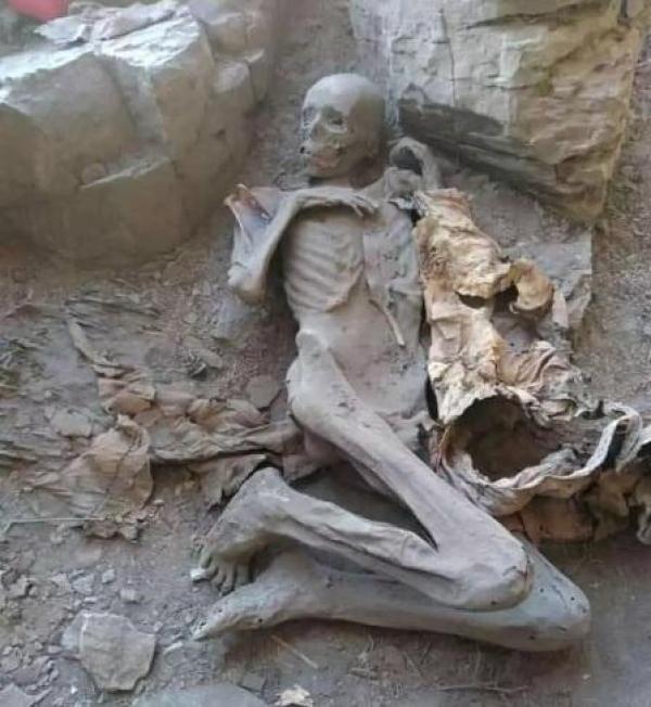 """العثور على مومياء ملك حميري في """"سياني إب"""""""